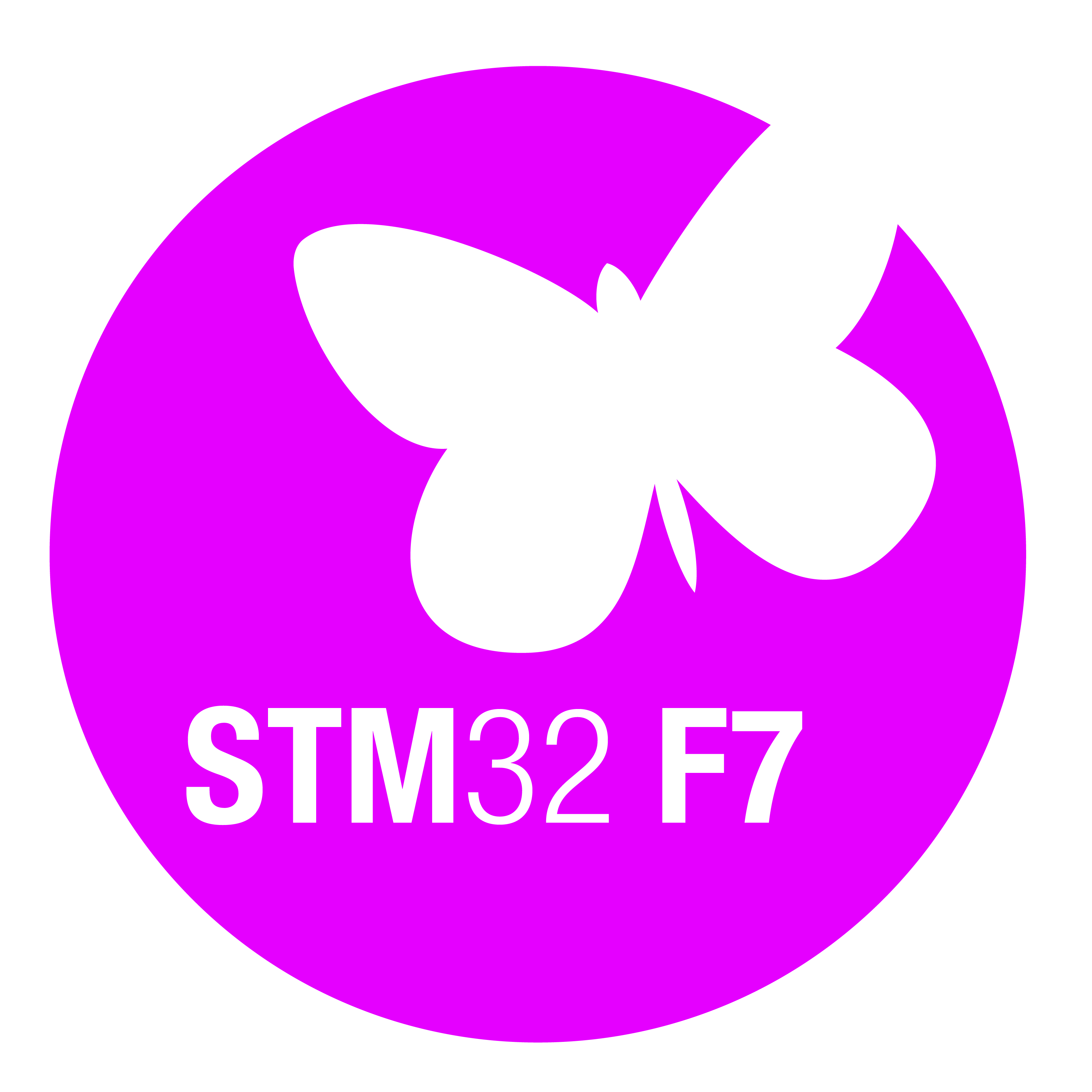 RS2575_RS2575_Module_STM32_F7_for_print.jpg